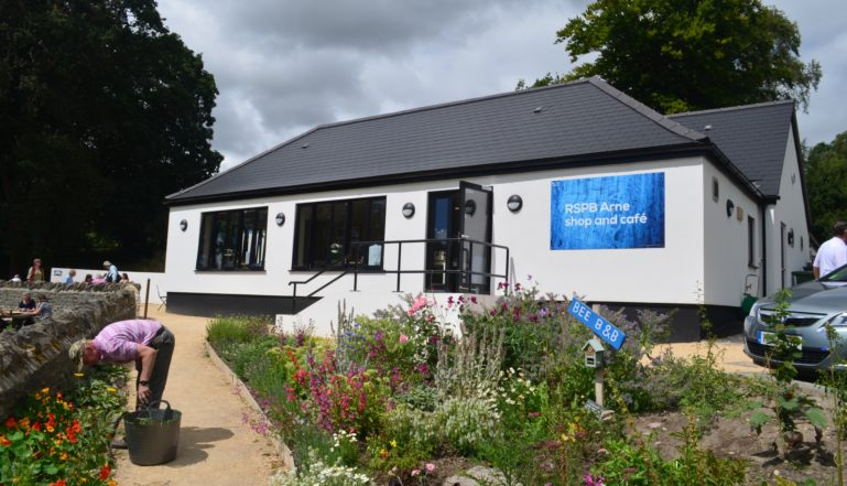 RSPB Arne cafe and shop